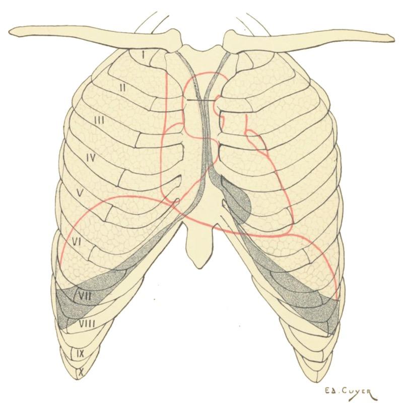 Ejercicios de respiración, Clases de canto, Como aprender a cantar, como cantar, ejercicios de vocalización, técnica vocal