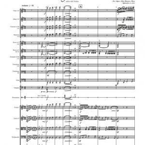 Mi Flor Huasteca: arreglo para Orquesta Sinfónica