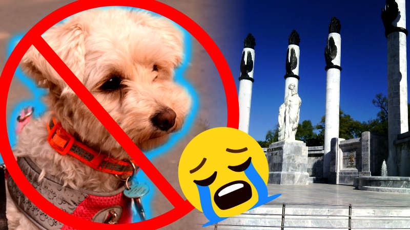 Parques No PetFriendly en la Ciudad de México