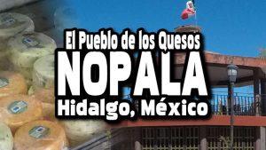 Nopala de Villagran – Delicioso Queso de Rancho en Hidalgo