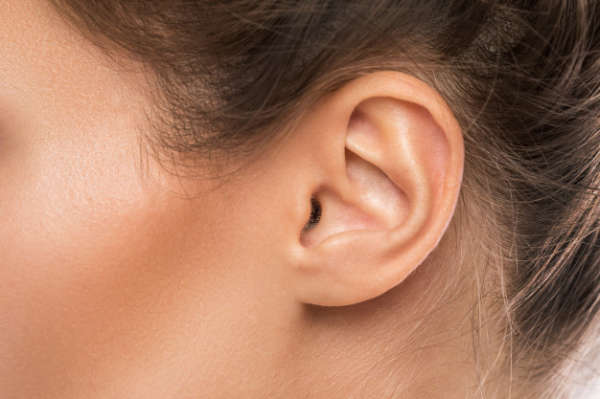 la forma de las orejas